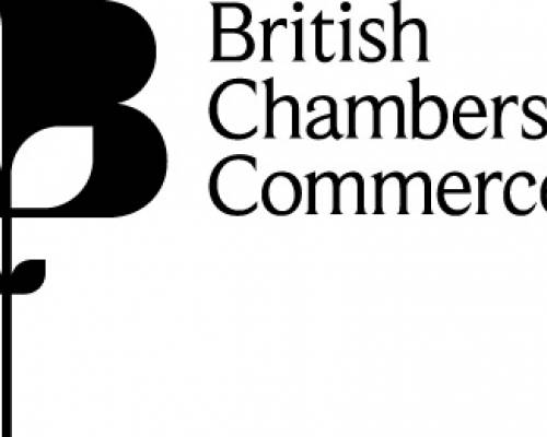BCC announces future change of Director General