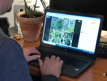 Creating a 'Virtual Woodland' for those in need