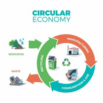 Investigating circular economy opportunities for business