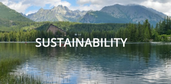Opportunities on how businesses can support the environment