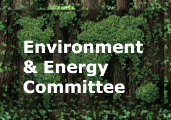 Proactive engagement through Committee initiative