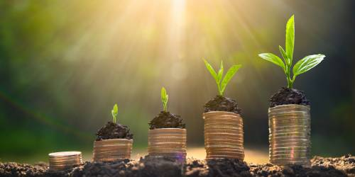 BCC SAYS BUSINESSES CAN HAVE A LEADING ROLE IN THE SWITCH TO A GREENER FUTURE