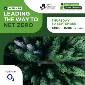 Leading the way to Net Zero